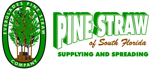 Pine Straw of South Florida logo